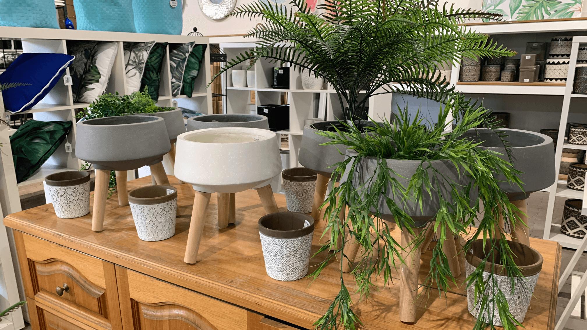 indoor pots manawee