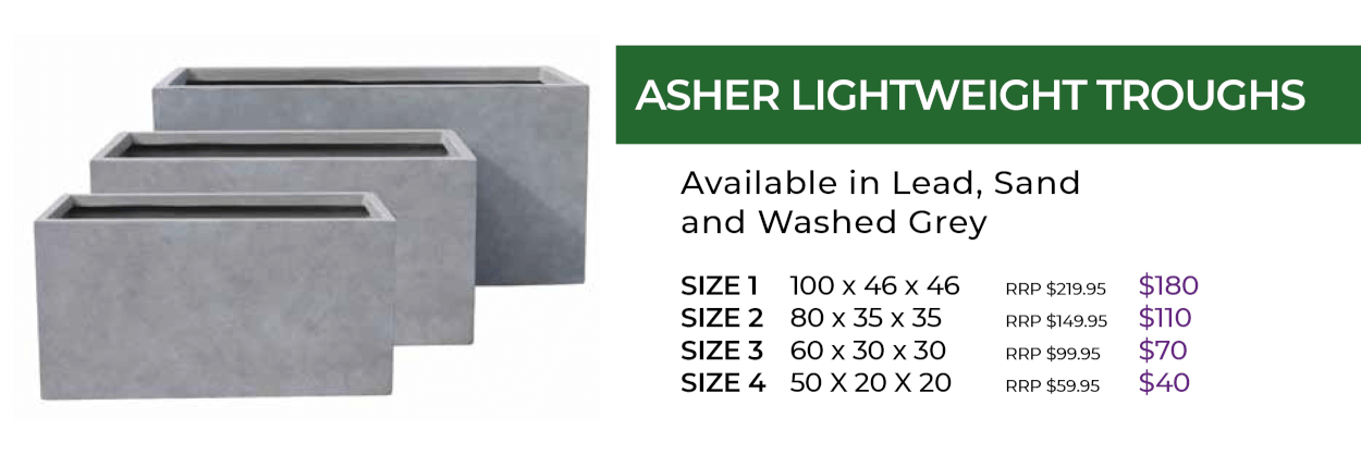 Asher Lightweight trough pots Manawee Spring Sale